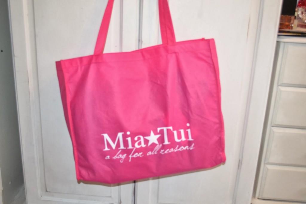 Review – Mia Tui bag