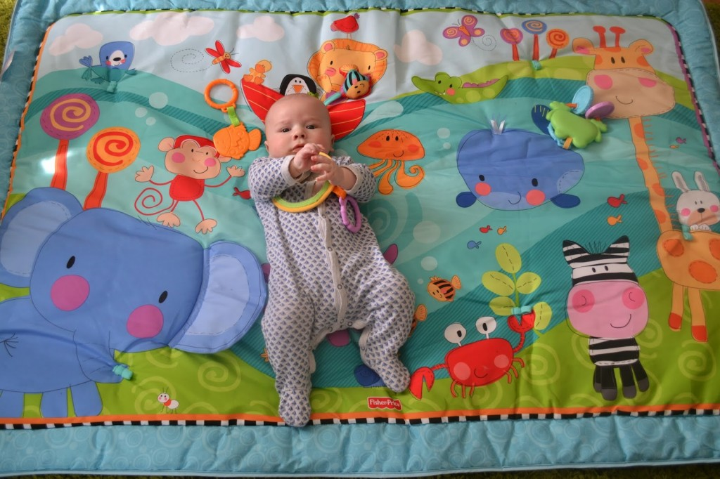 Fisher Price Discover 'n Grow Jumbo Baby Playmat