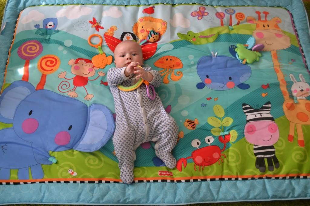 Fisher Price Discover 'n Grow Jumbo Baby Playmat