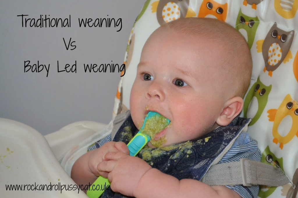 Baby Led weaning vs Traditional weaning