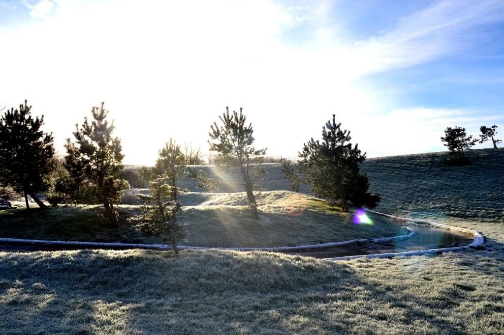 Bluestone in Wales in the snow
