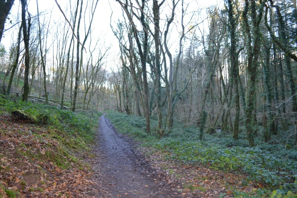 Bluestone in Wales nature trail