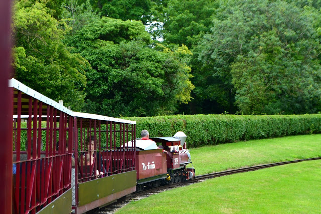 Lightwater Valley express train