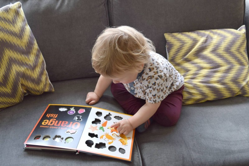 Colours Colours Everywhere book review