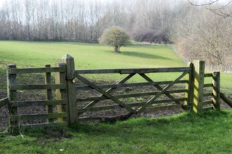 Billy-Quay-farm-field-gate