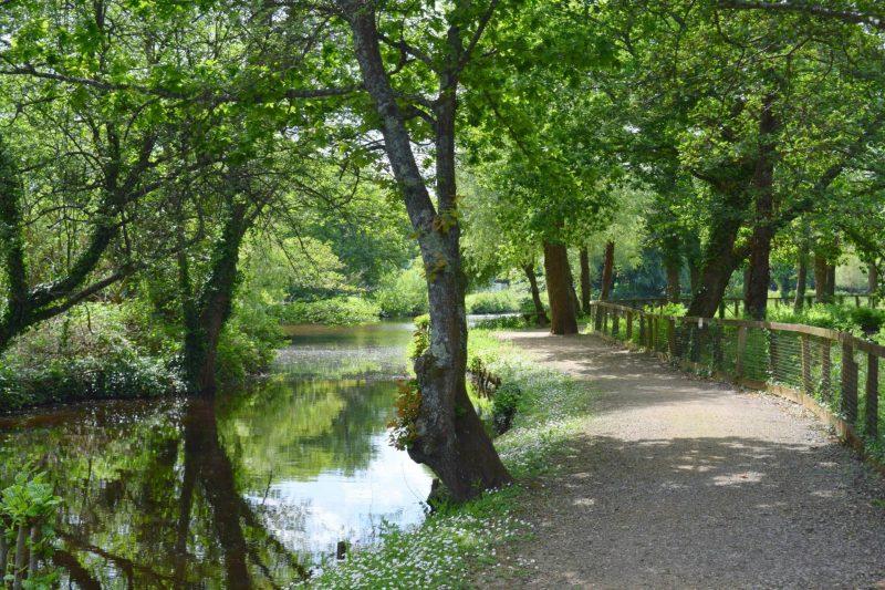 Paultons-Park-riverside