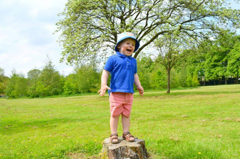 Tree-trunk-childhood