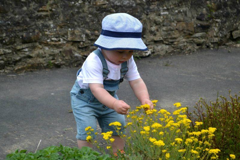 toddler-garden