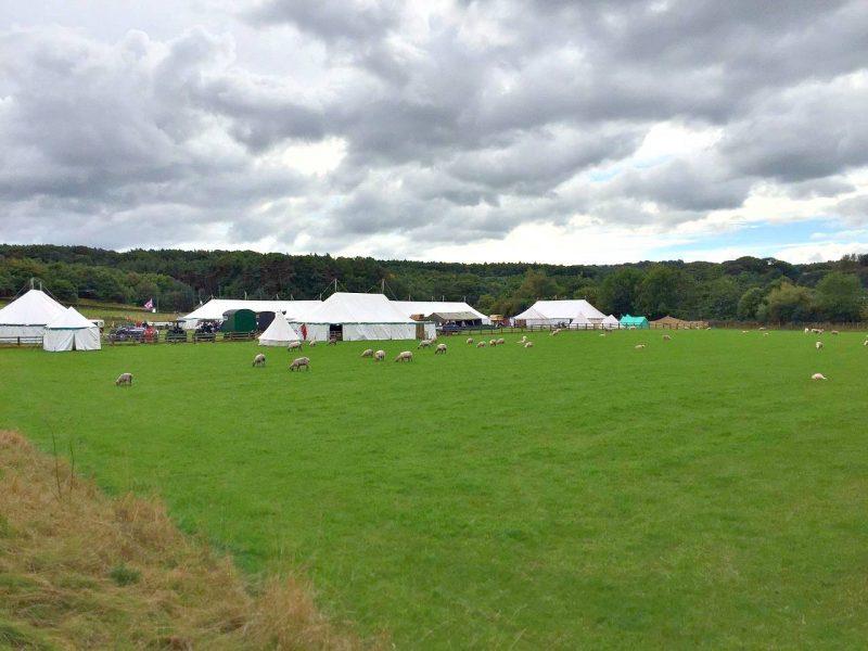 Beamish-field