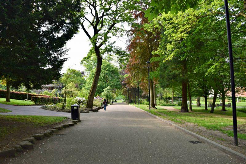 wallsall-arboretum-trees