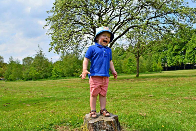 walsall-arboretum-eli