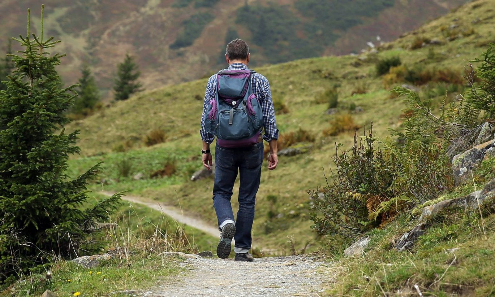 4 Must Have Purchases for Those New To Walking