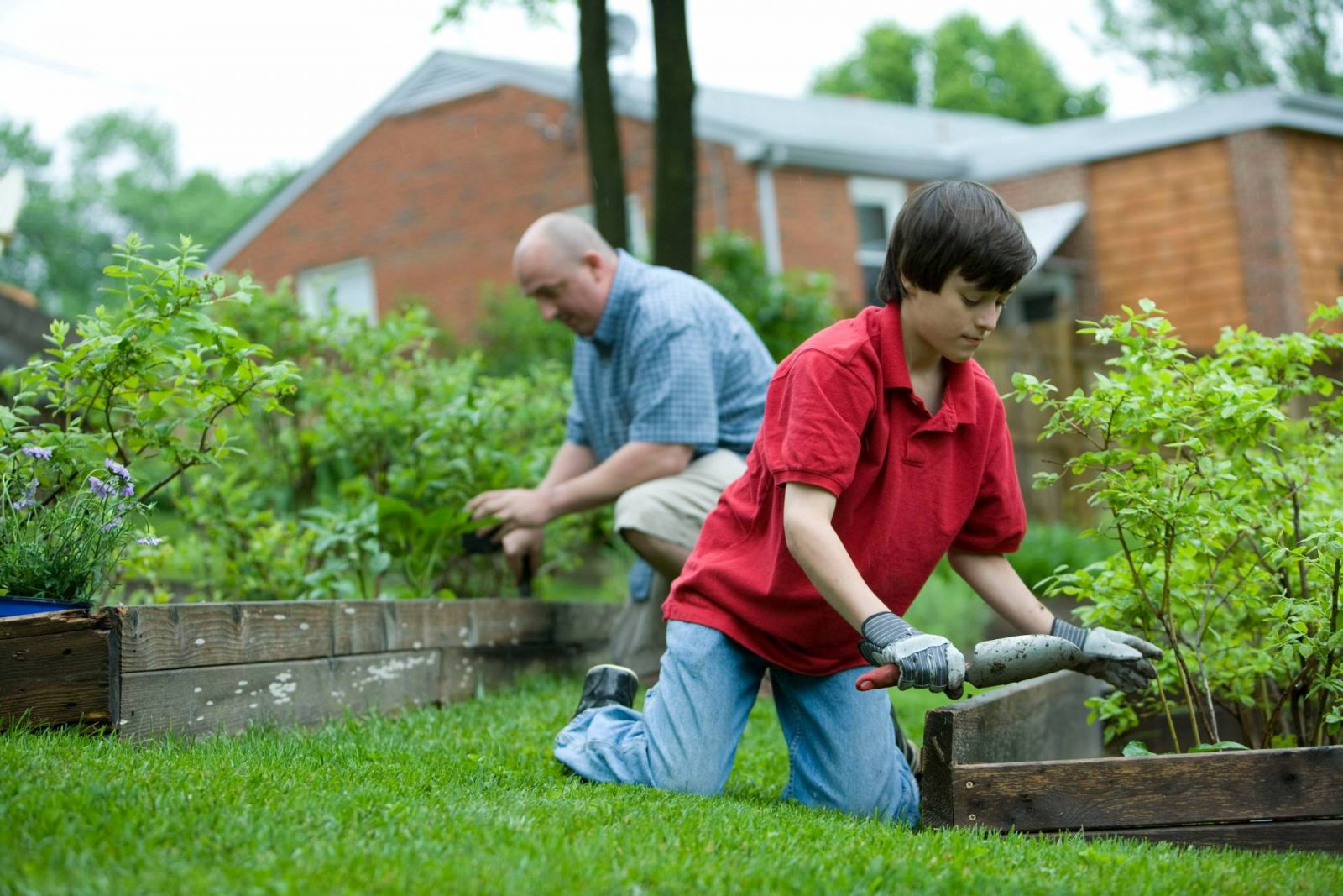 5 simple ways to get your garden ready for Summer